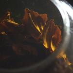 国産紅茶のべにほまれ~人と人をつなぐ紅茶~「あさイチ」より