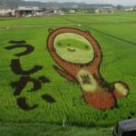 今、田んぼアートが見頃です。全国の田んぼアートをご紹介します。